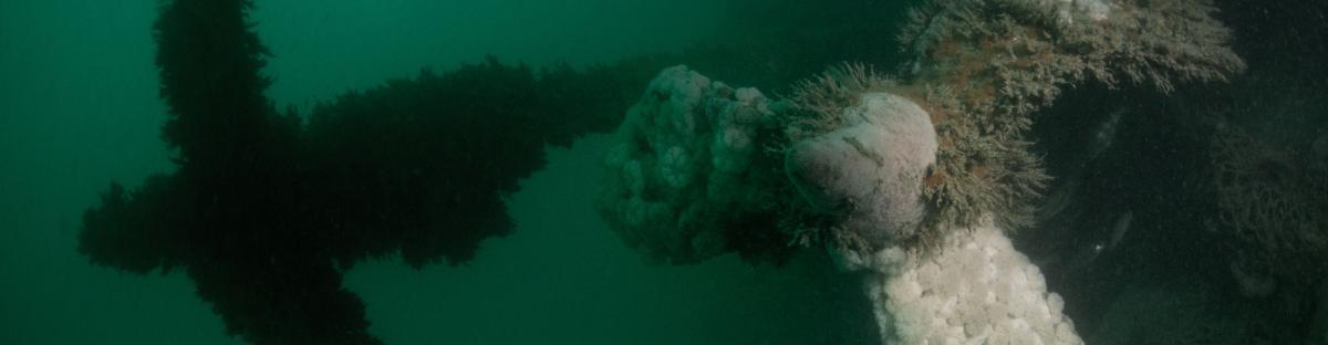 Hélices de l'épave du U95, un sous-marin porté disparu par les Allemands le 06 février 1918